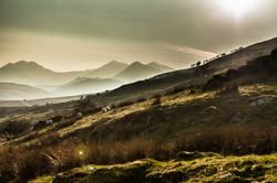 Snowdonia and sheep