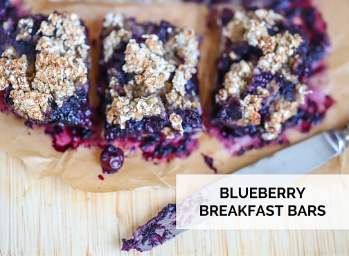blueberry bars SEPT.png