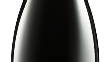 Ebner-Ebenauer Pinot Noir Black Edition