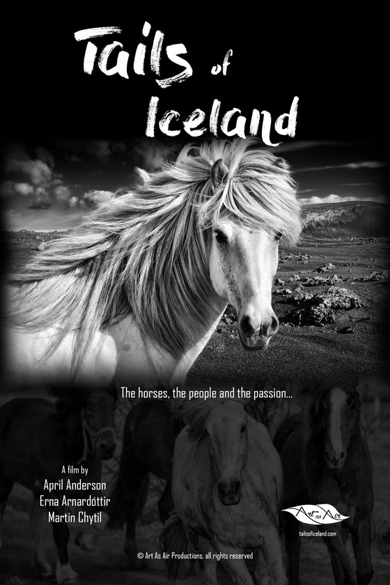 'Tails of Iceland' documentary explores the bond between Icelanders and their unique horses