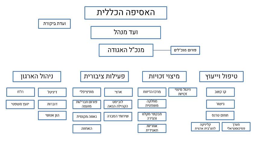 עץ ארגוני.jpg