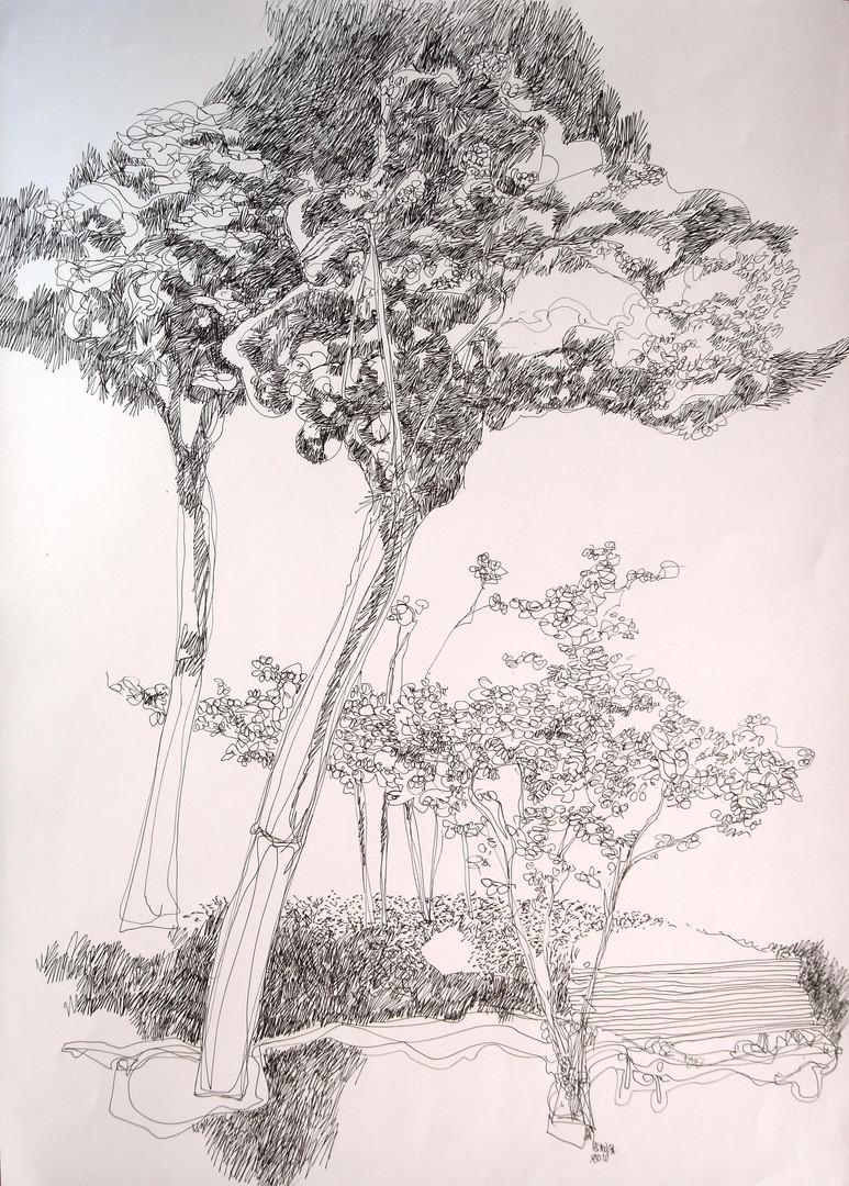 Parque del Retiro 6