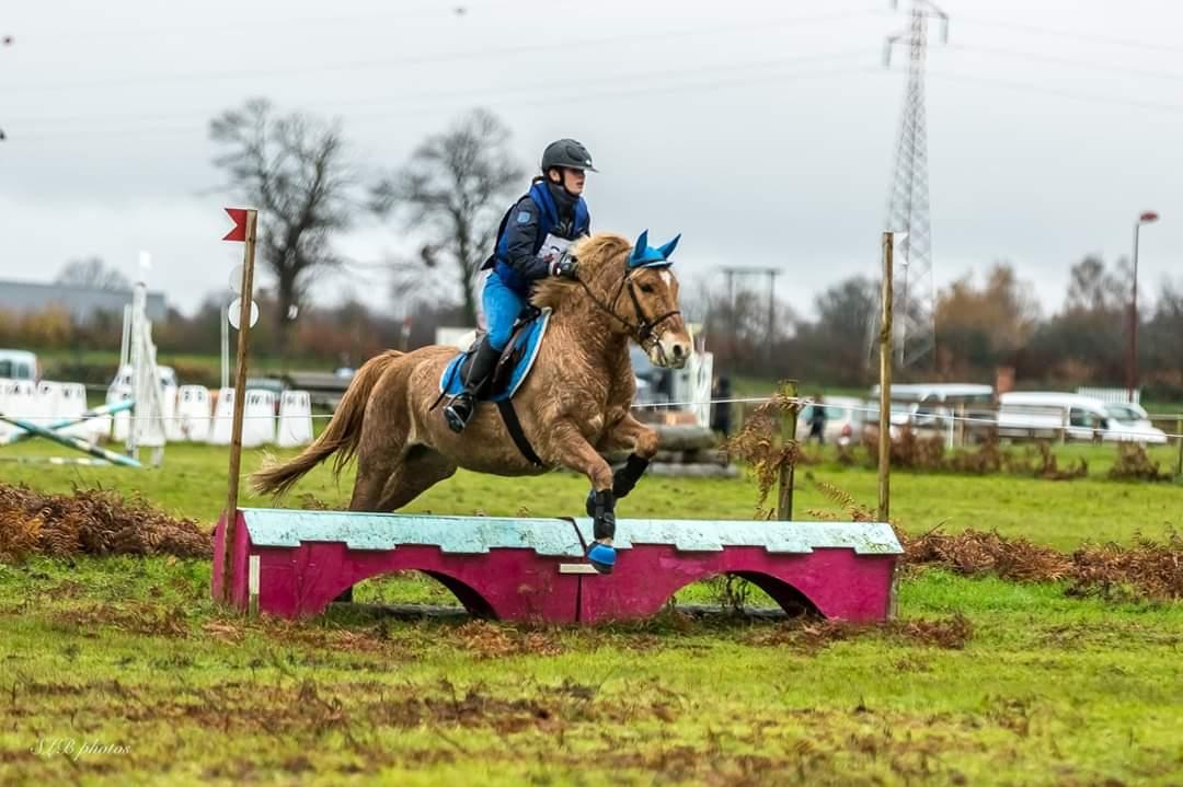 Concours complet d'équitation Aubigny sur Nère