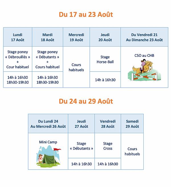 Programme des stages d'été du Club Hippique d'Aubigny sur Nère