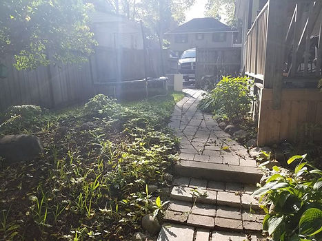 Backyard clean up