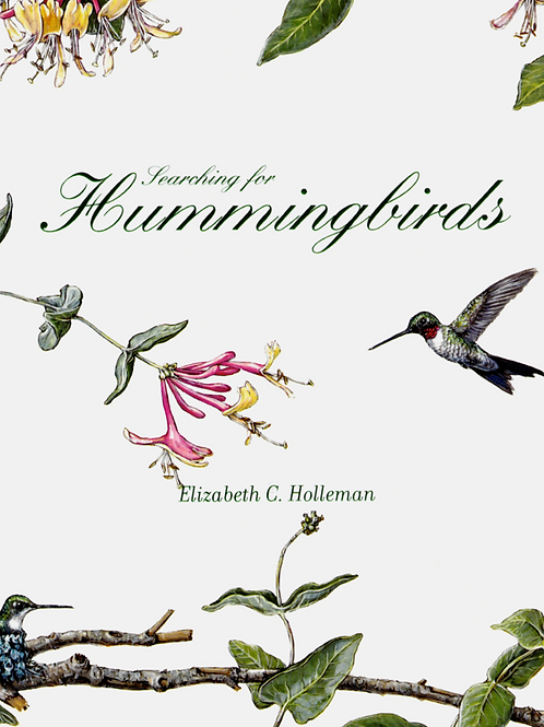 Searching for Hummingbirds