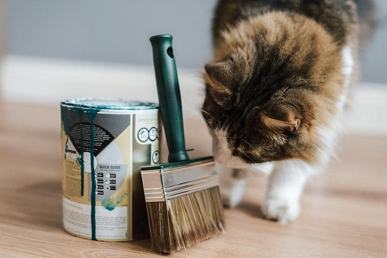 Chat peintre.jpg
