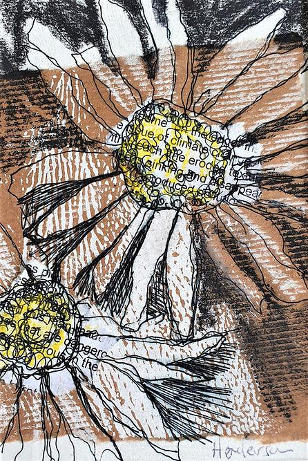 Daisies-collage-11x-16cm-image-25cm-x-30