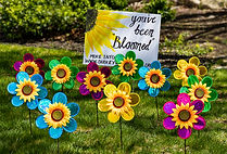 Bloom final no banner.jpg