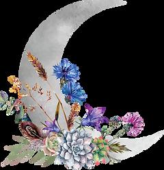 WbJB_Moon Logo_Color.png