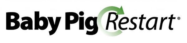 Baby Pig Restart.jpg