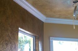 Color Ceiling