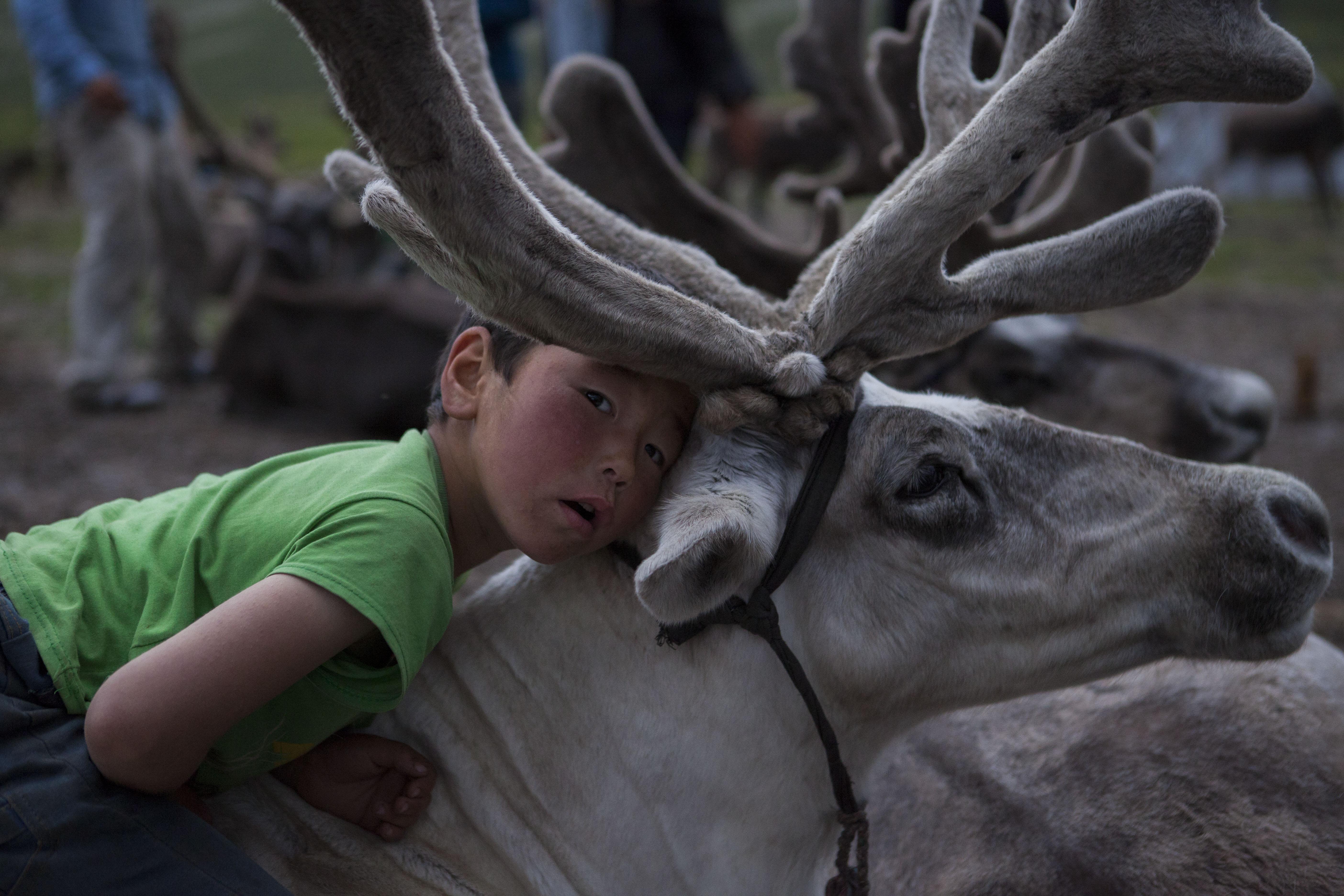 childrens of mongolia 4