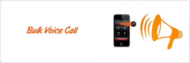 Voice call sms marketing