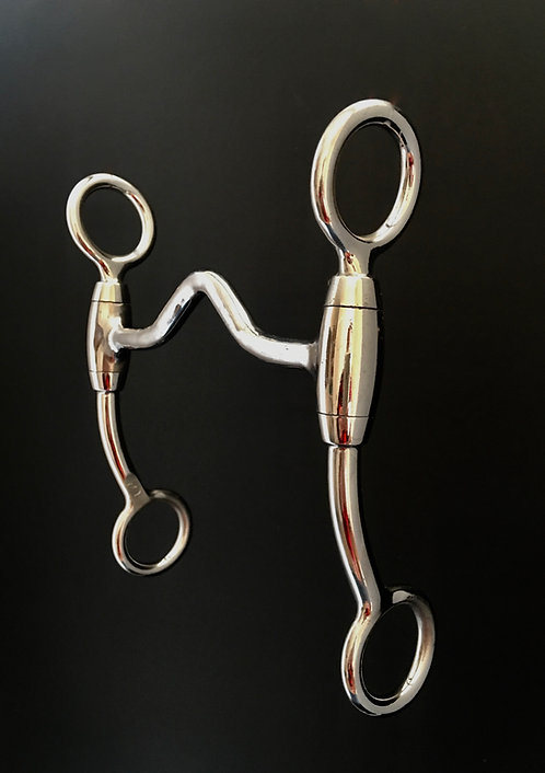 """LS061 6 Inch Stainless Steel Shanks with 3/8"""" Low Port"""