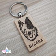 Border Collie - Rumba
