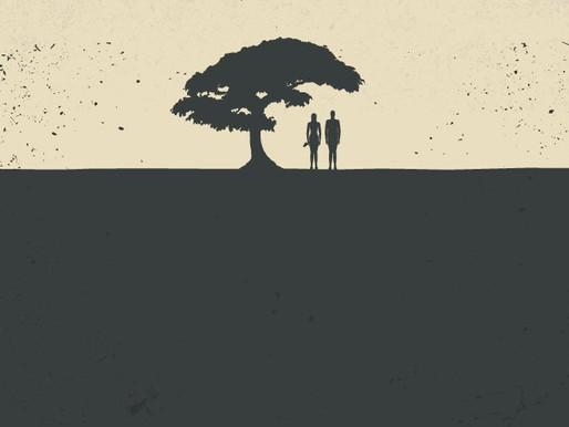 Still Waters: The Tree