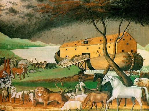 Still Waters: Noah's Obedience