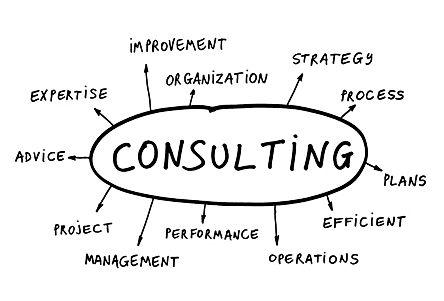 Dexterity WMS Consulting