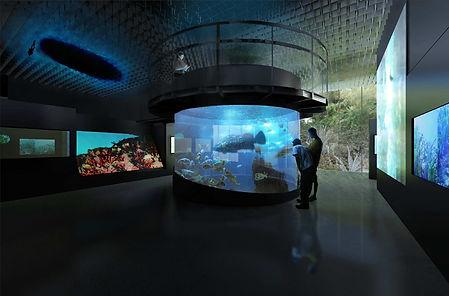 akvarium.jpg
