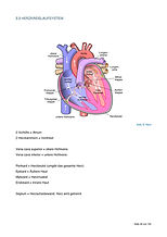 Biologie-seiten-40-page-001.jpg
