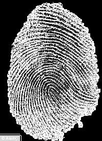 fingerprint_edited.png