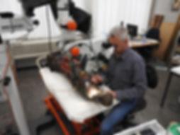 Atelier Maastricht Truyen 2018.jpg