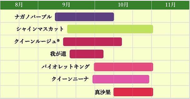 ぶどう収穫カレンダー