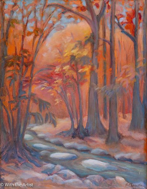 Autumn Woods, Scotts Run