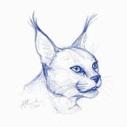 digital_sketch2