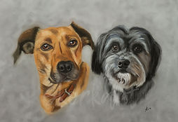 Double pet portrait