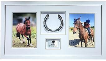Horse memorial frame