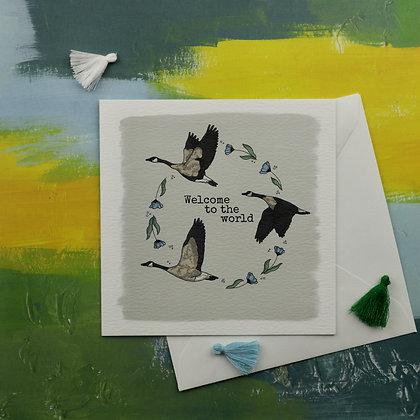 Baby Boy Geese Greetings Card