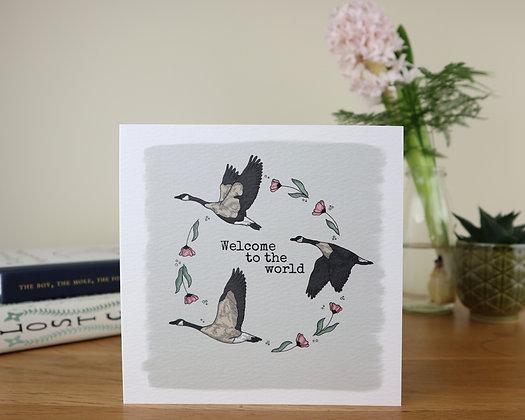 Baby Girl Geese Greetings Card