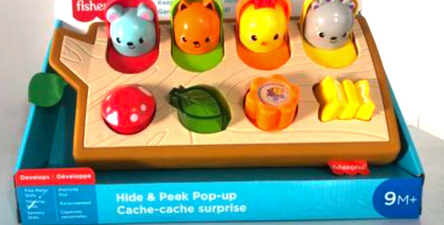 9 Months and Up: Hide and Peek Pop Up Toy