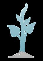 תמונה מצוירת של עץ בינוני