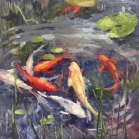 The Pond (5)