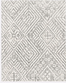 Area Rug.PNG