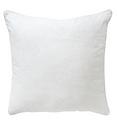 Throw pillow 4.PNG