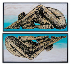 Flex Reflect Dyptich.jpg