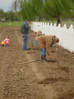 Planting 3-10 (9)