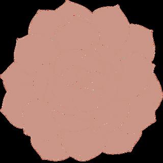 pink succulent6.png
