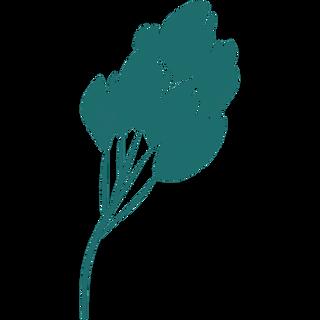 green floral desktop icon  2.png
