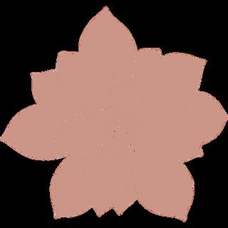 pink succulent10.png