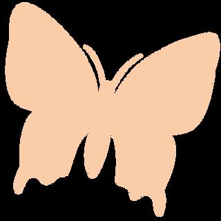 butterfly orange .png