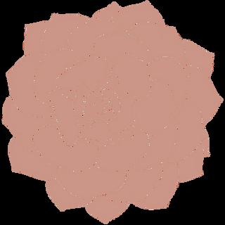 pink succulent.png