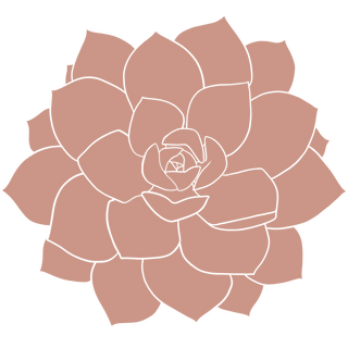 pink succulent9.png