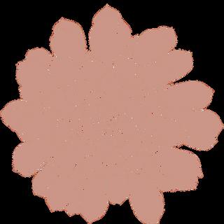 pink succulent4.png