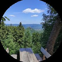 wandern-rehbergturm_edited.png