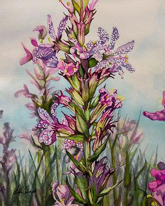 Weed Series no.5, Original Watercolor